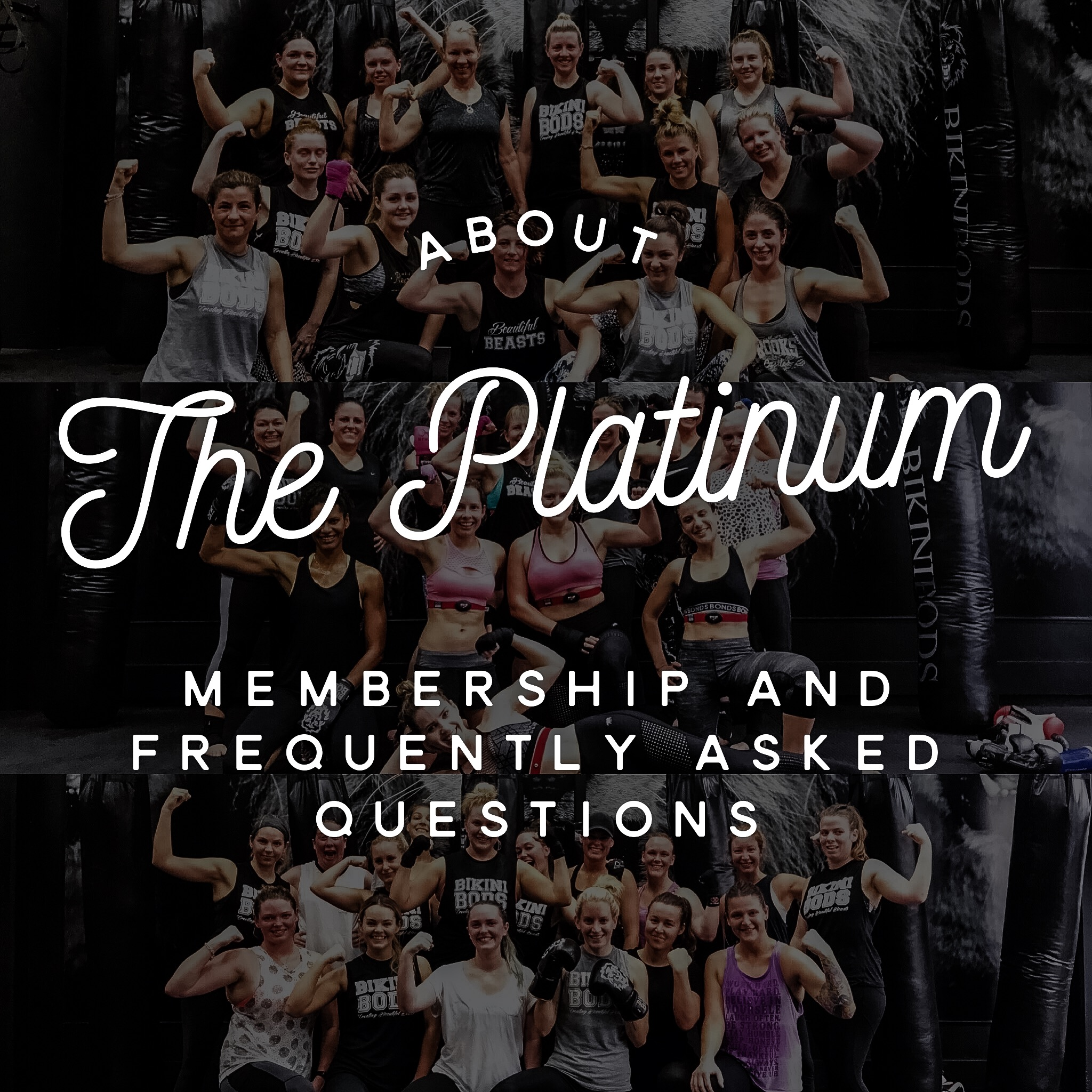 FREQUENTLY ASKED QUESTIONS – PLATINUM PACKAGE