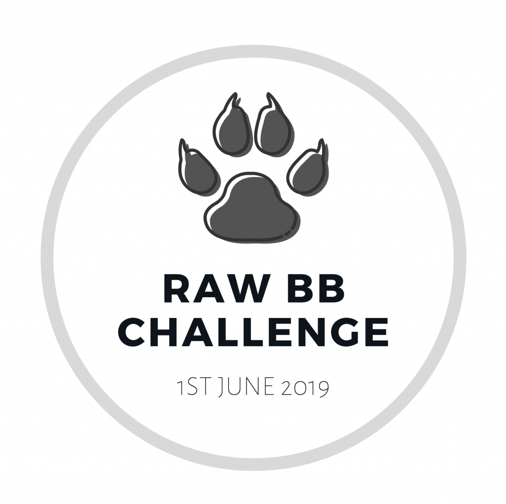 GET YOUR TICKET TO OUR BB RAW CHALLENGE